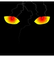 Scary eyes on the black background vector image vector image