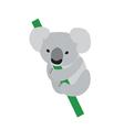 Cute baby koala vector image