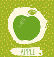 Apple hand drawn sketched fruit with leaf on blue vector image