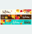 colorful autumn banner set fall sale background vector image