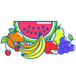 isolated fruits design vector image