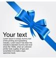 shiny blue satin ribbon vector image