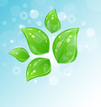 nature background with set leaves vector image