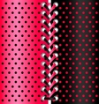 red and black lace vector image vector image