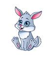 cartoon rabbit isolated vector image