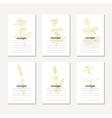 Recipe cards collection with hand drawn spicy vector image