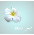 background with exotic frangipani flower Thank you vector image