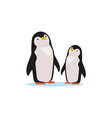 couple of penguins sitting on an ice arctic fauna vector image