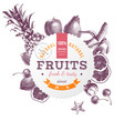 round emblem with hand drawn fruits vector image vector image