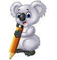 Cute koala holding pencil isolated vector image