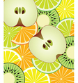 slices of citrus kiwi and apple vector image