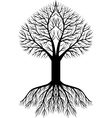 beauty tree silhouette vector image vector image