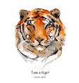portrait of a tiger watercolor vector image