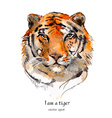 portrait of a tiger watercolor vector image