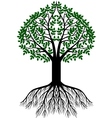 tree silhouette background vector image