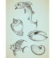 fish and sea shells vector image