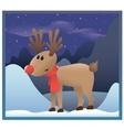 reindeer red nose vector image