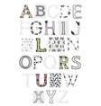 set of letters lace vector image vector image