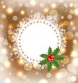 Christmas greeting card with mistletoe vector image