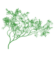detailed green tree vector image vector image