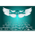 dna witth wing vector image