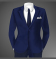 stylish business blue suit vector image