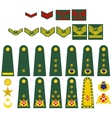 Turkish army insignia vector image vector image