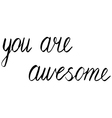 you are awesome vector image