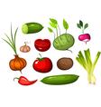 vegetable set vector image