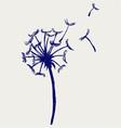 Blow Dandelion vector image