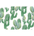 cactus pattern texture on white modern vector image