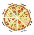 set of hand drawn pizza popular varieties vector image