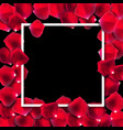 abstract natural rose petals frame background vector image