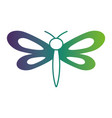 dragonfly insect spring season pictogram vector image