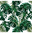 Jungle green thickets of tropical palm leaves and vector image