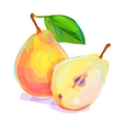 Pear hand drawn on a white background vector image vector image