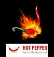 Burning Chili Pepper vector image