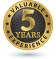 5 years valuable experience gold label vector image