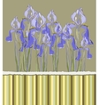 Decorative pattern invitation with Iris flowers vector image