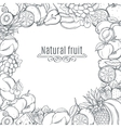 Fruits hand drawn frame vector image