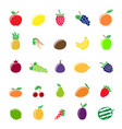 colorful fruit silhouettes vector image