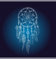 art of traditional indian dream catcher vector image