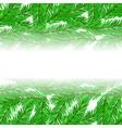 fir green branches pattern vector image