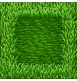 Square on green grass vector image