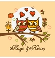 cute little owls pattern vector image