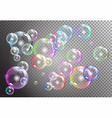 raibow bubbles on transparent background vector image vector image