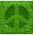 Pacific symbol on green grass vector image