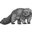 bearcat animal cartoon vector image vector image
