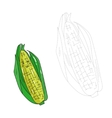 Educational game connect dots draw corn vector image