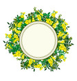 flower frame with yellow tansy vector image